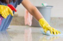 Pendik Temizlik Şirketleri Firmaları